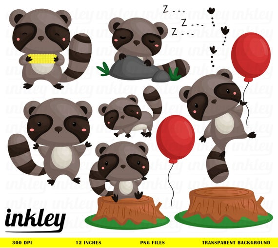 Raccoon Clipart, Raccoon Clip Art, Raccoon Png, Cute Animal Clipart, Wood  Clipart, Cute Raccoon Clipart, Balloon Clipart, Woodland Animal.