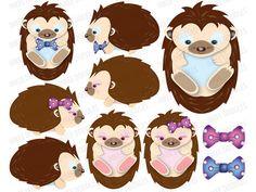 Baby Hedgehog Art Print.