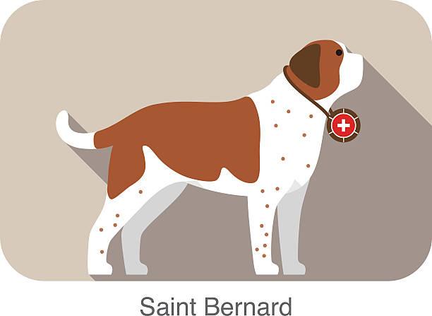 Saint Bernard Clip Art, Vector Images & Illustrations.