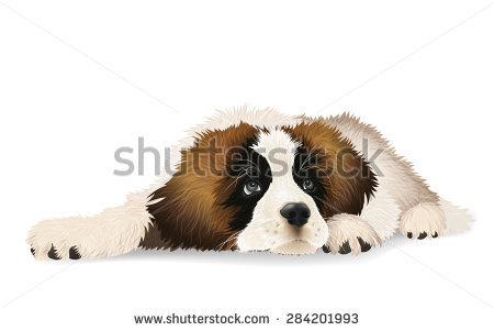 Saint Bernard Dog Stock Vectors, Images & Vector Art.
