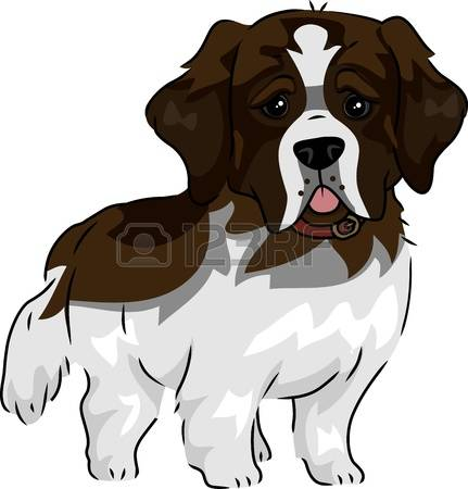 209 St Bernard Stock Vector Illustration And Royalty Free St.