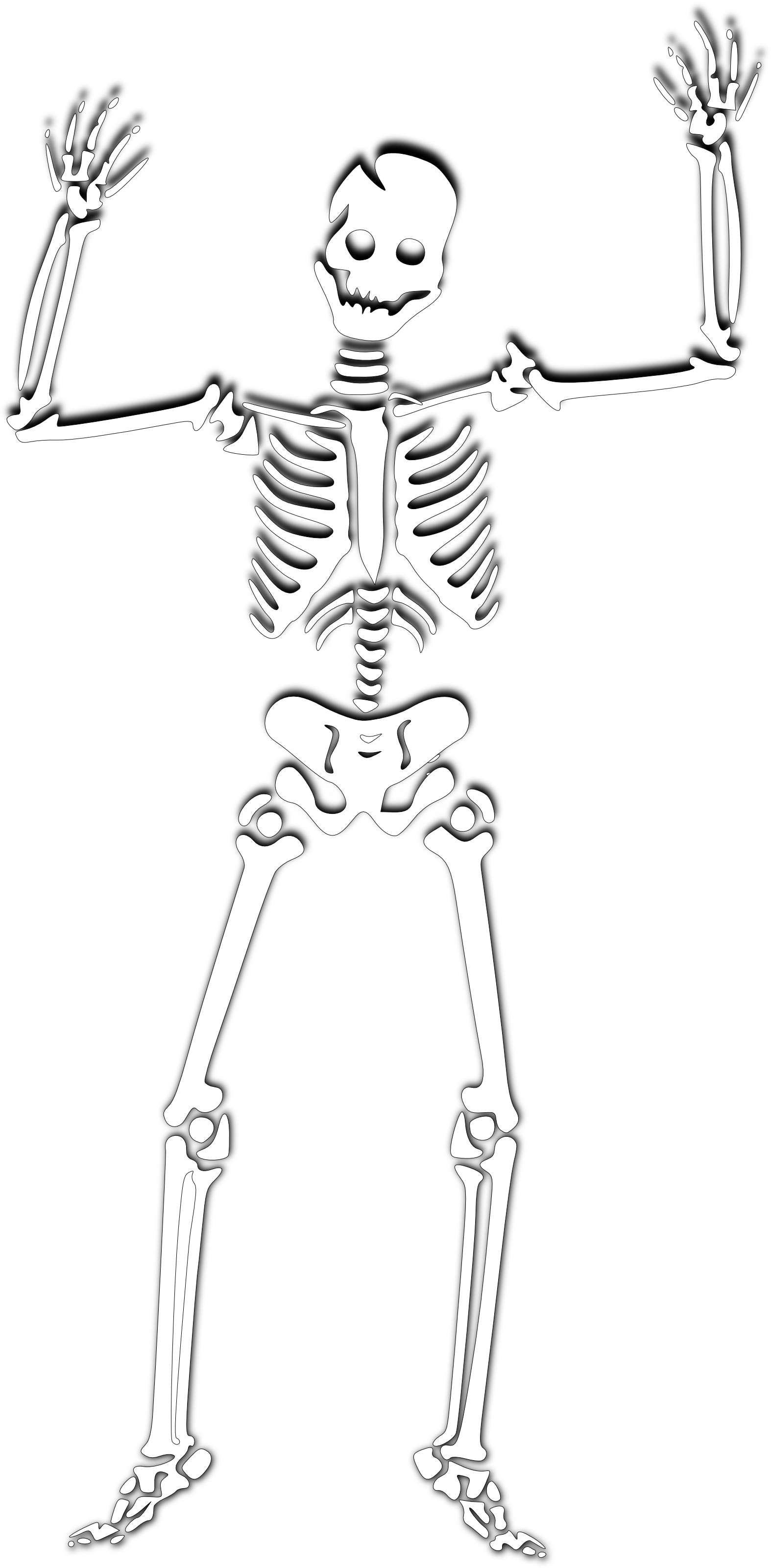 Free Skeleton Clip Art Pictures.