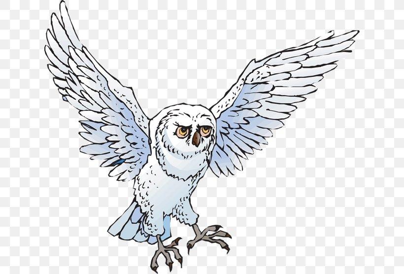 Snowy Owl Drawing Clip Art, PNG, 640x556px, Owl, Artwork.