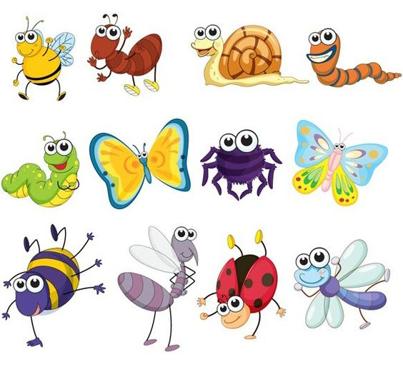XOO Plate :: 12 Funny Little Vector Insects Set.