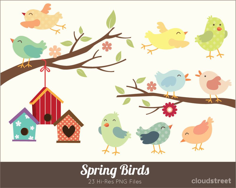 Spring Birds Clipart for personal and commercial use ( Cute birds.