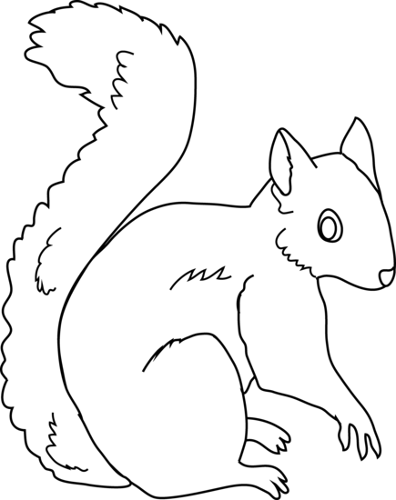 Free Images Of Squirrel, Download Free Clip Art, Free Clip.