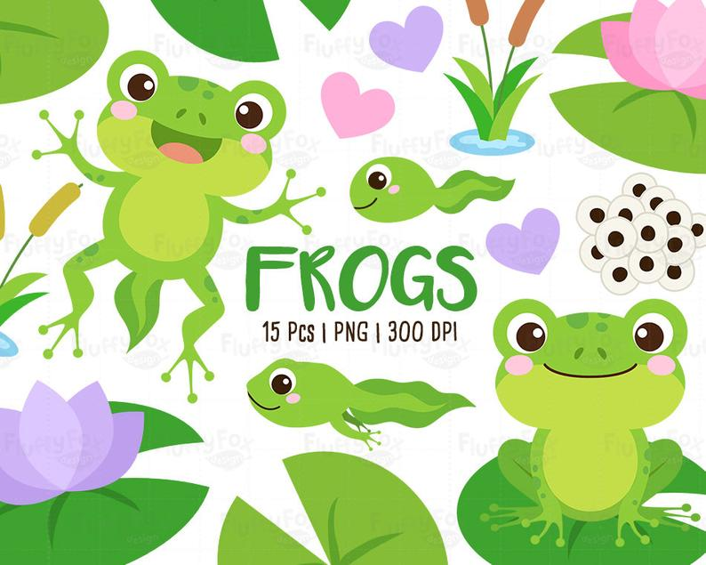 Frogs Clipart, Pond Animals Clip Art, Tadpole Froglet Egg.