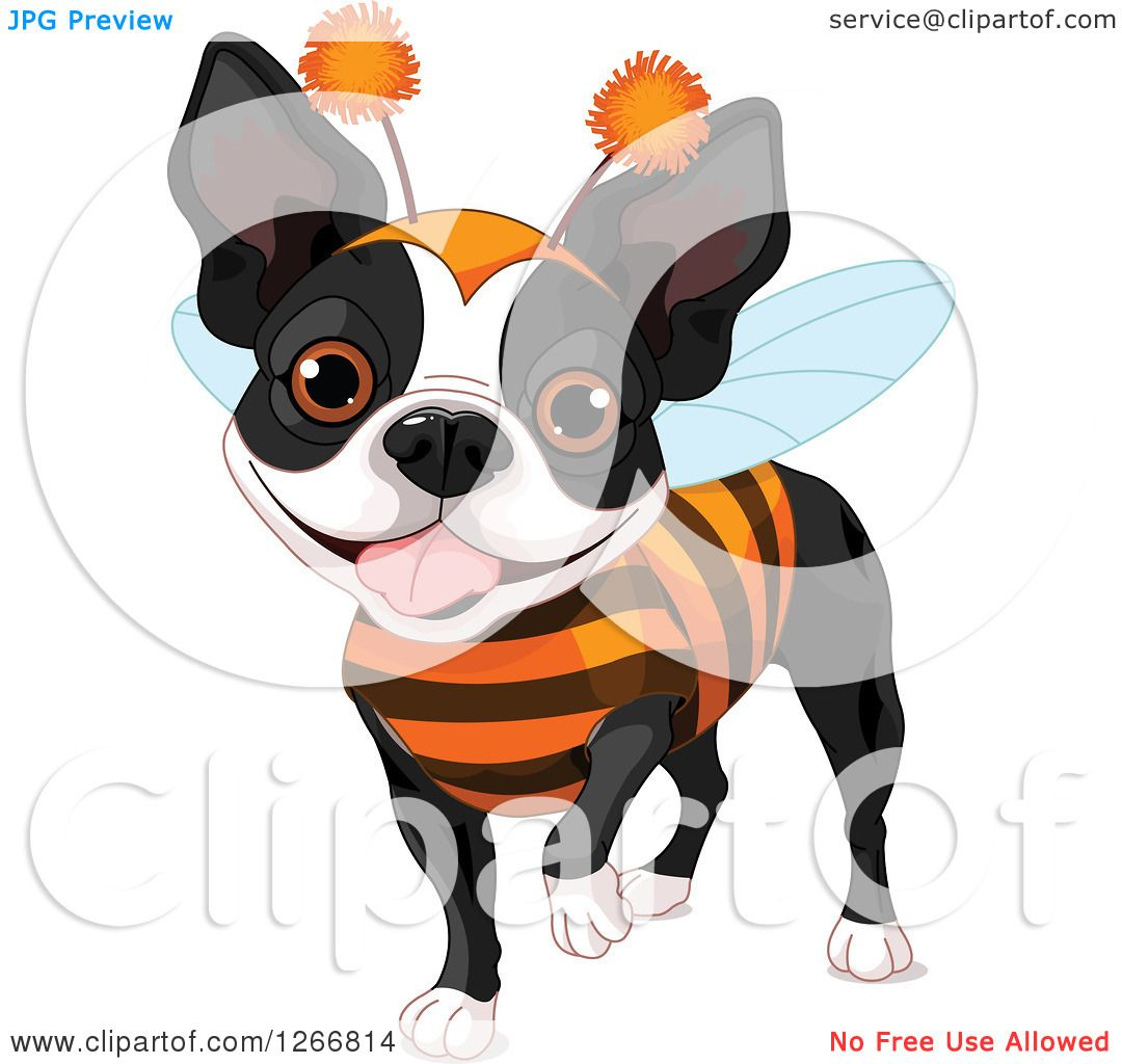 Clipart of a Cute Boston Terrier Dog in a Bug Halloween Costume.