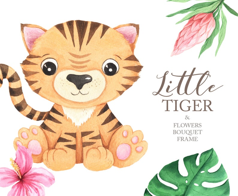Watercolor Little Tiger clipart. Cute tiger and tropical flowers for  instant download, baby shower, birthday party set PNG files DIY 60.