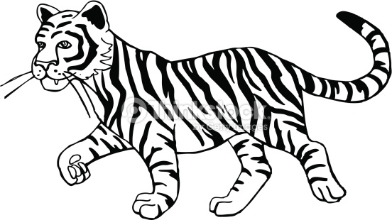 Cute Tiger Clipart Black and White.