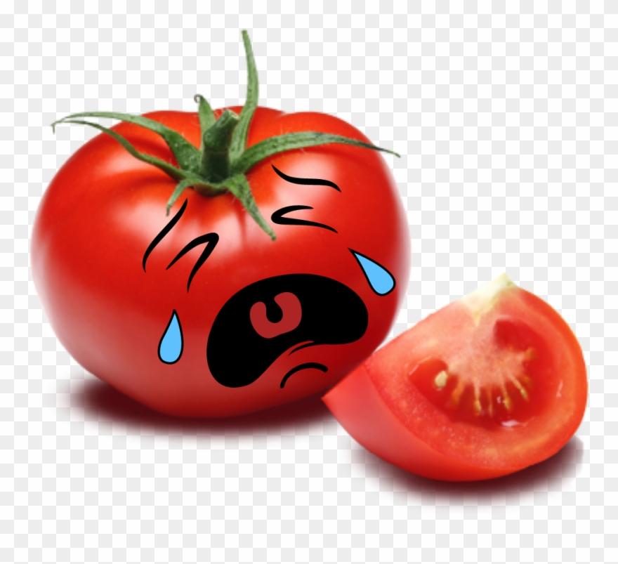Adorable Red Cute Sad Scyousa.