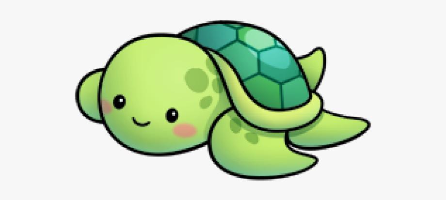Turtle Clipart Cute.