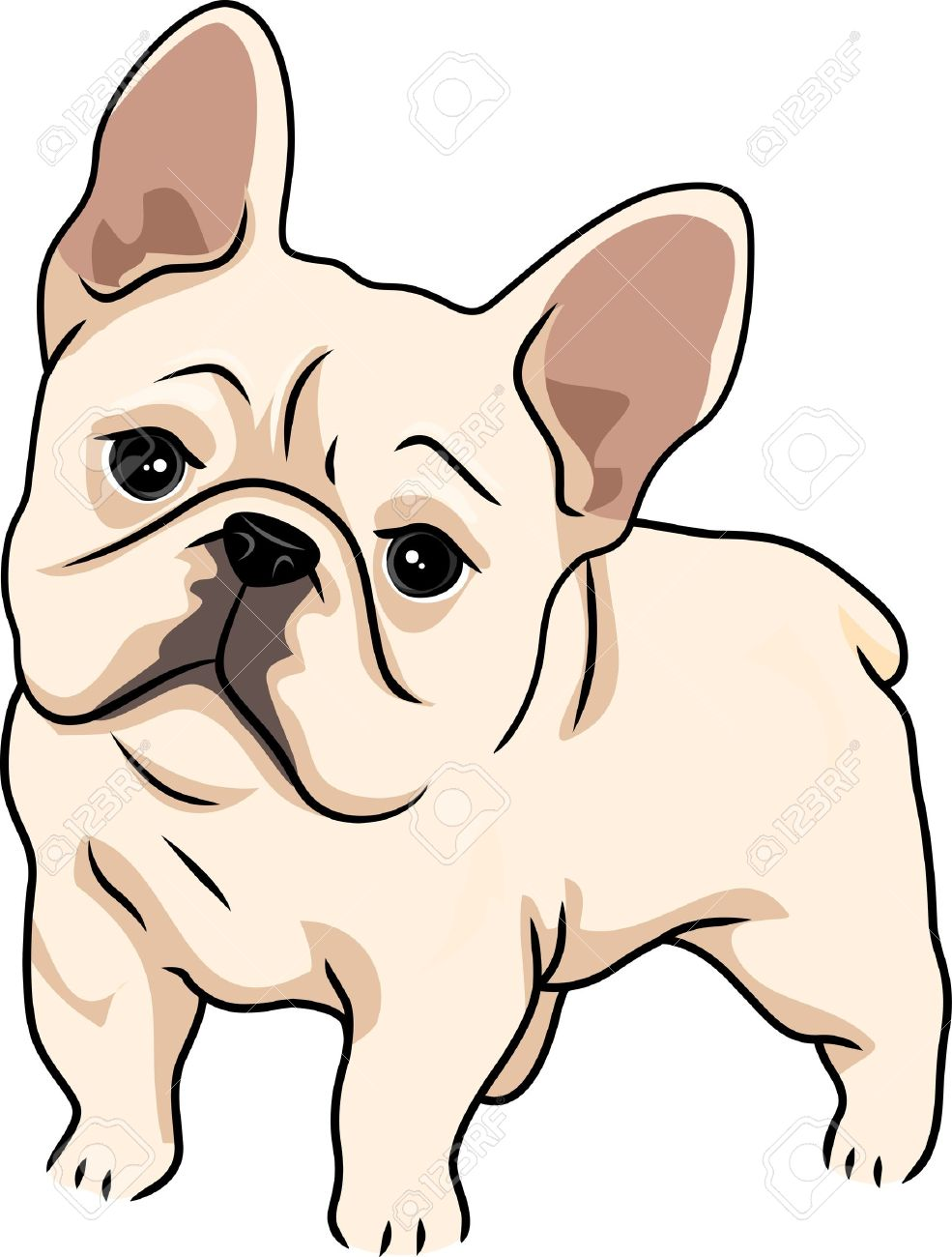 Cute bulldog clipart 6 » Clipart Station.