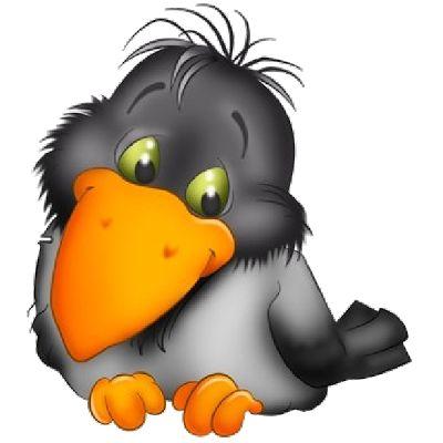 Crow Cuteness.