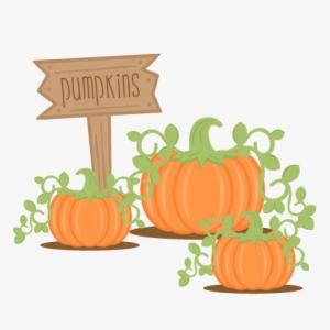 Cute Pumpkin PNG & Download Transparent Cute Pumpkin PNG.
