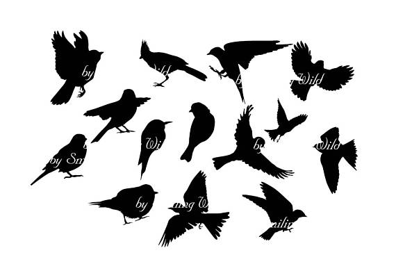 flying bird svg clipart silhouette songbirds silhouettes.