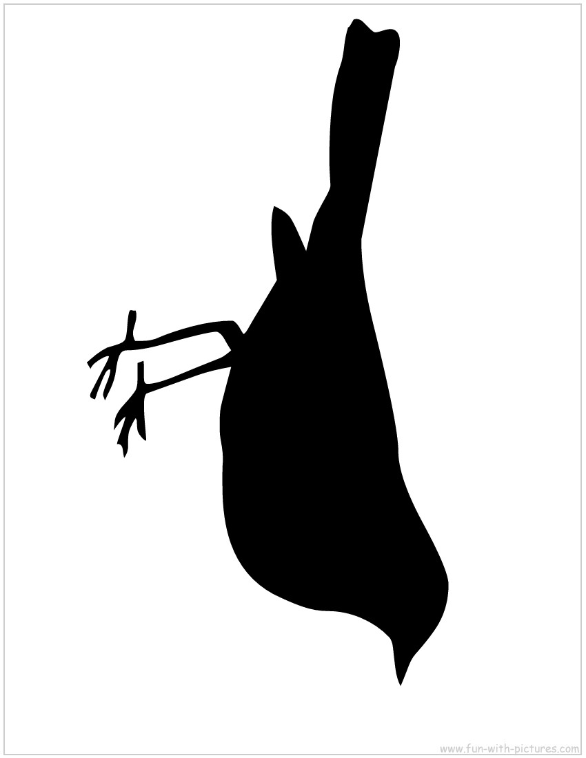 Cut out bird silhouette flying clipart.