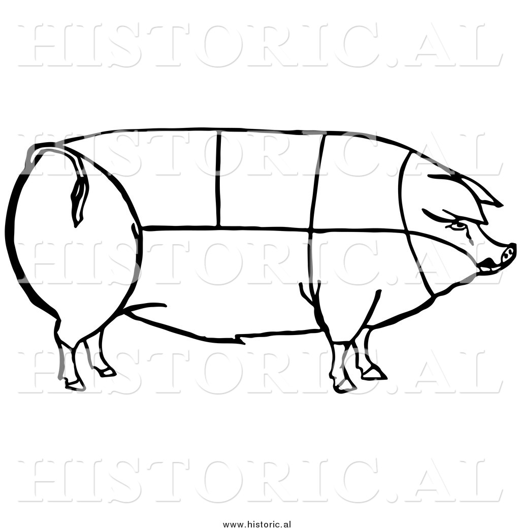 Clipart of a Pig with Outlined Cuts of Pork Chart.