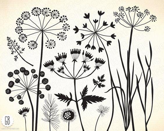 Wild herbs, wildflowers, plants, flora, silhouette, vector clip.