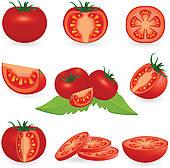 Tomato Vector Clip Art.