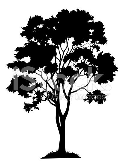 Maple tree with leaves and grass, black silhouette on white.