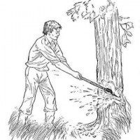 Cutting trees clipart black and white 2 » Clipart Portal.