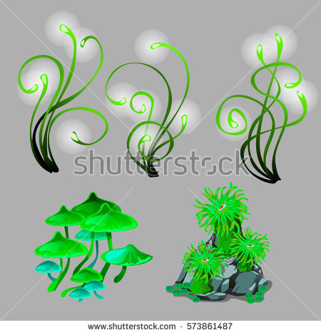 Polyps Stock Vectors, Images & Vector Art.