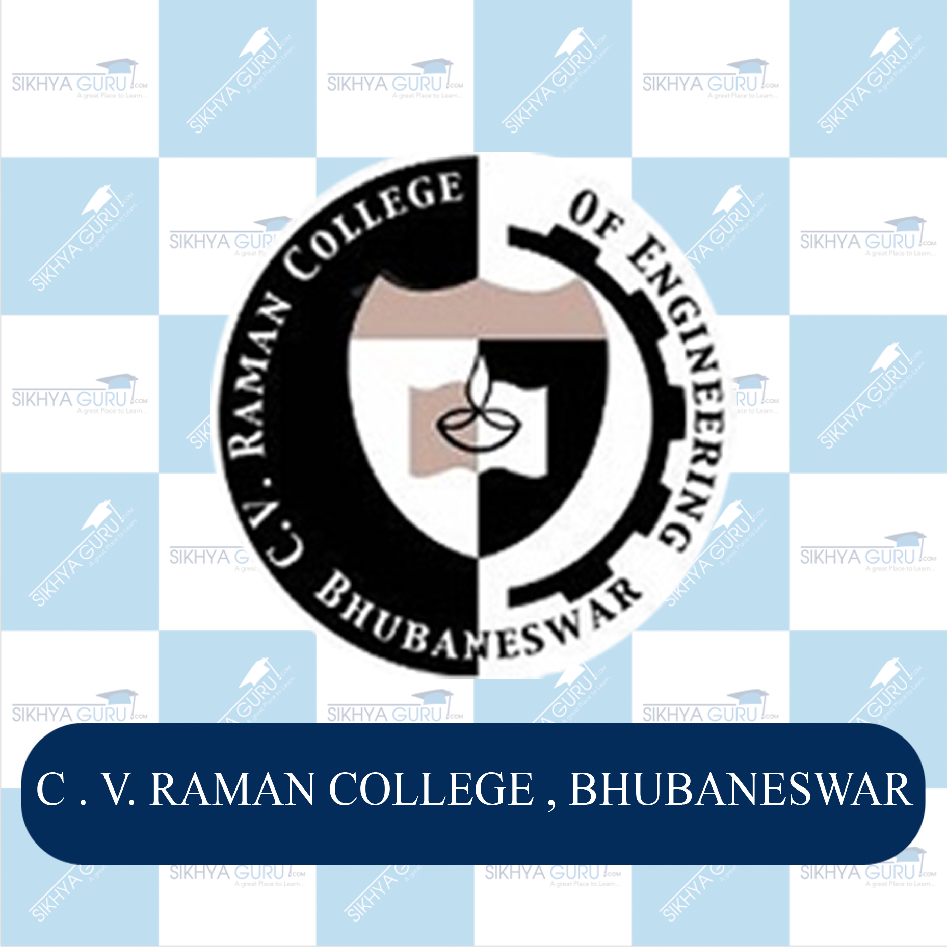 C.V.RAMAN college of Engineering.