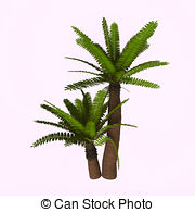 Cycad clipart #2