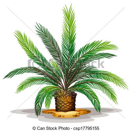 Cycad Vector Clip Art Royalty Free. 35 Cycad clipart vector EPS.