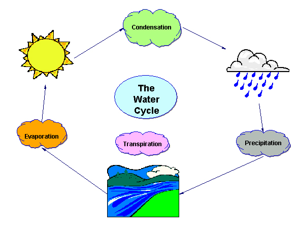 Water Cycle Clipart.