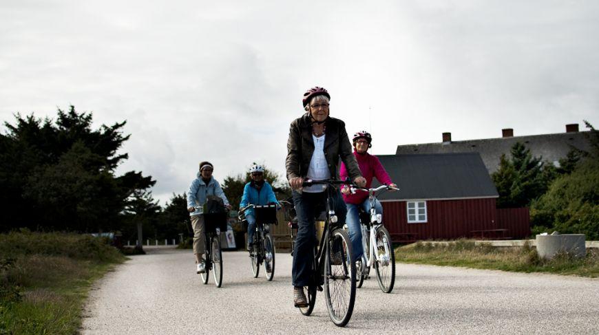 Cycling holidays in Hvide Sande.
