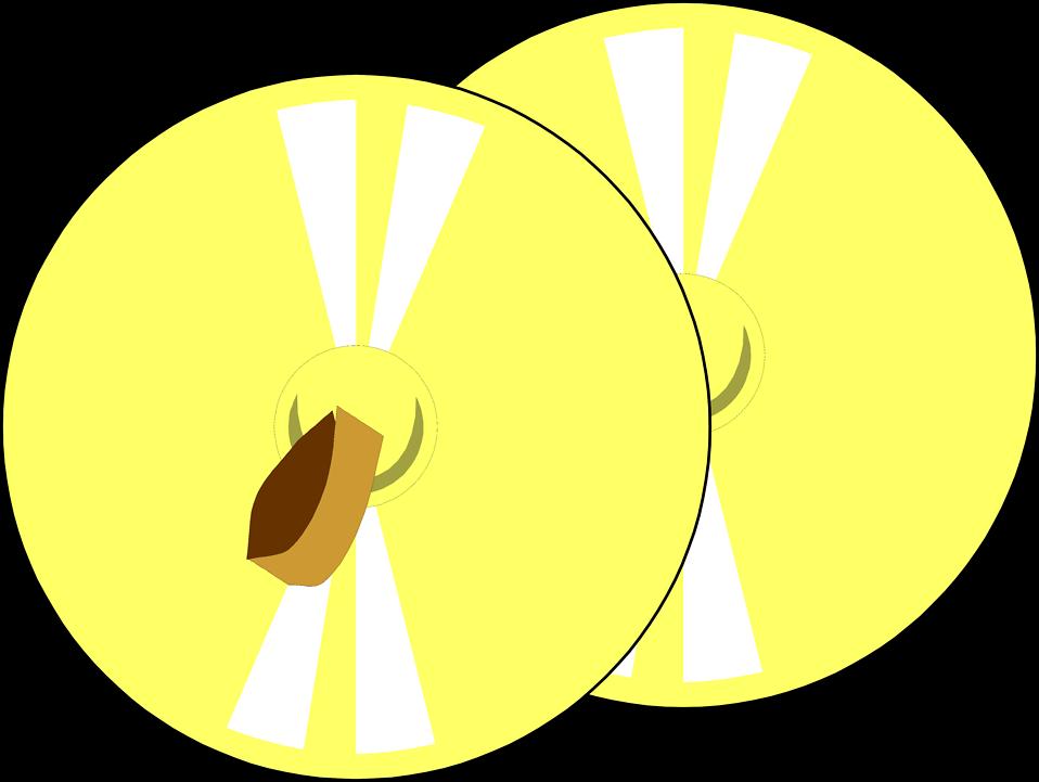 Cymbals.