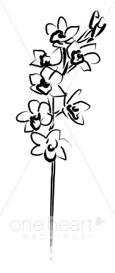 Black and White Hawaiian Cymbidium Sprig Clipart.