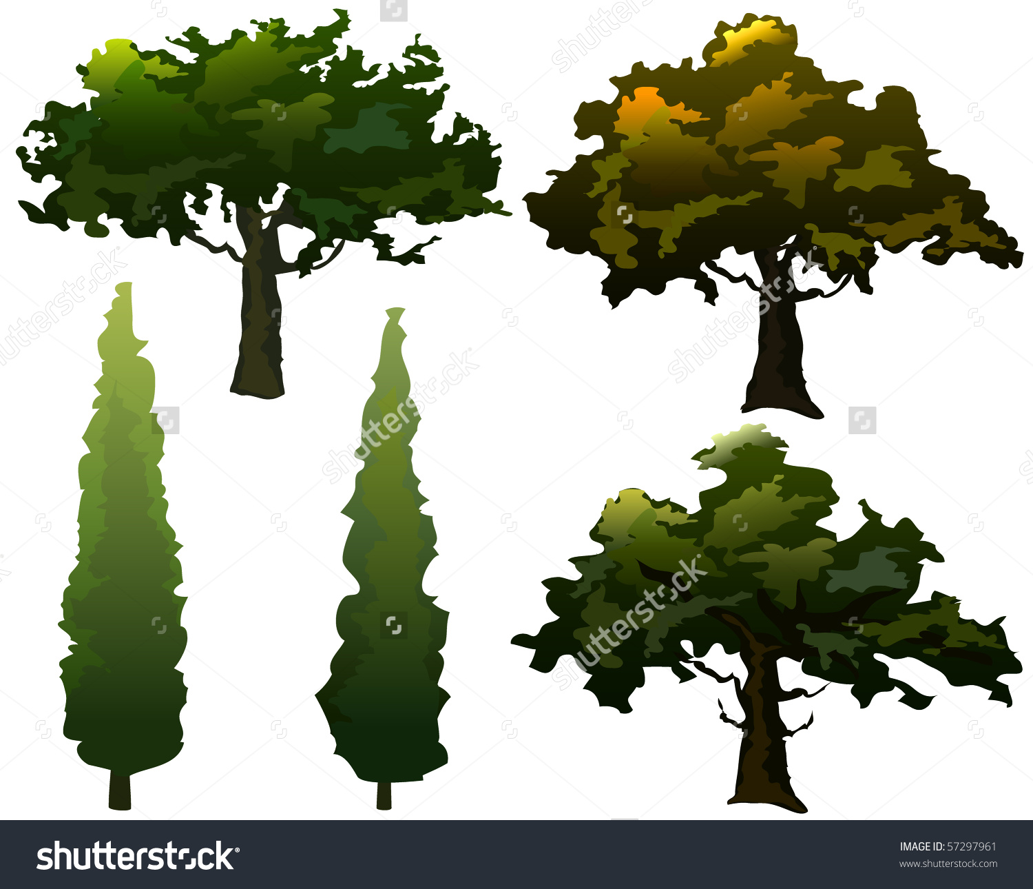 Collection Olive Trees Cypress Seasonal Colors Stock Vector.