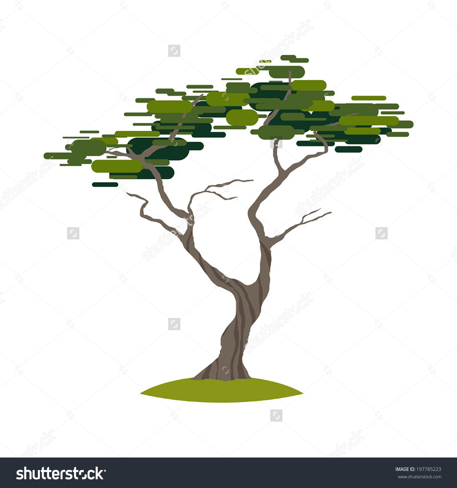 Cartoon Crooked Cypress Tree On Transparent Stock Vector 197785223.