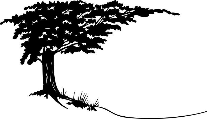 Cypress clip art.