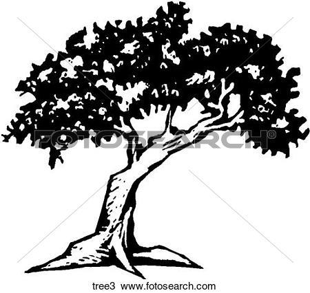 Clip Art of Pine Trees pines.