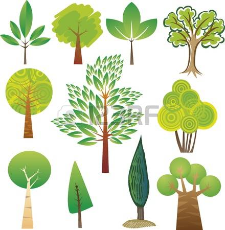 1,087 Cypress Stock Vector Illustration And Royalty Free Cypress.