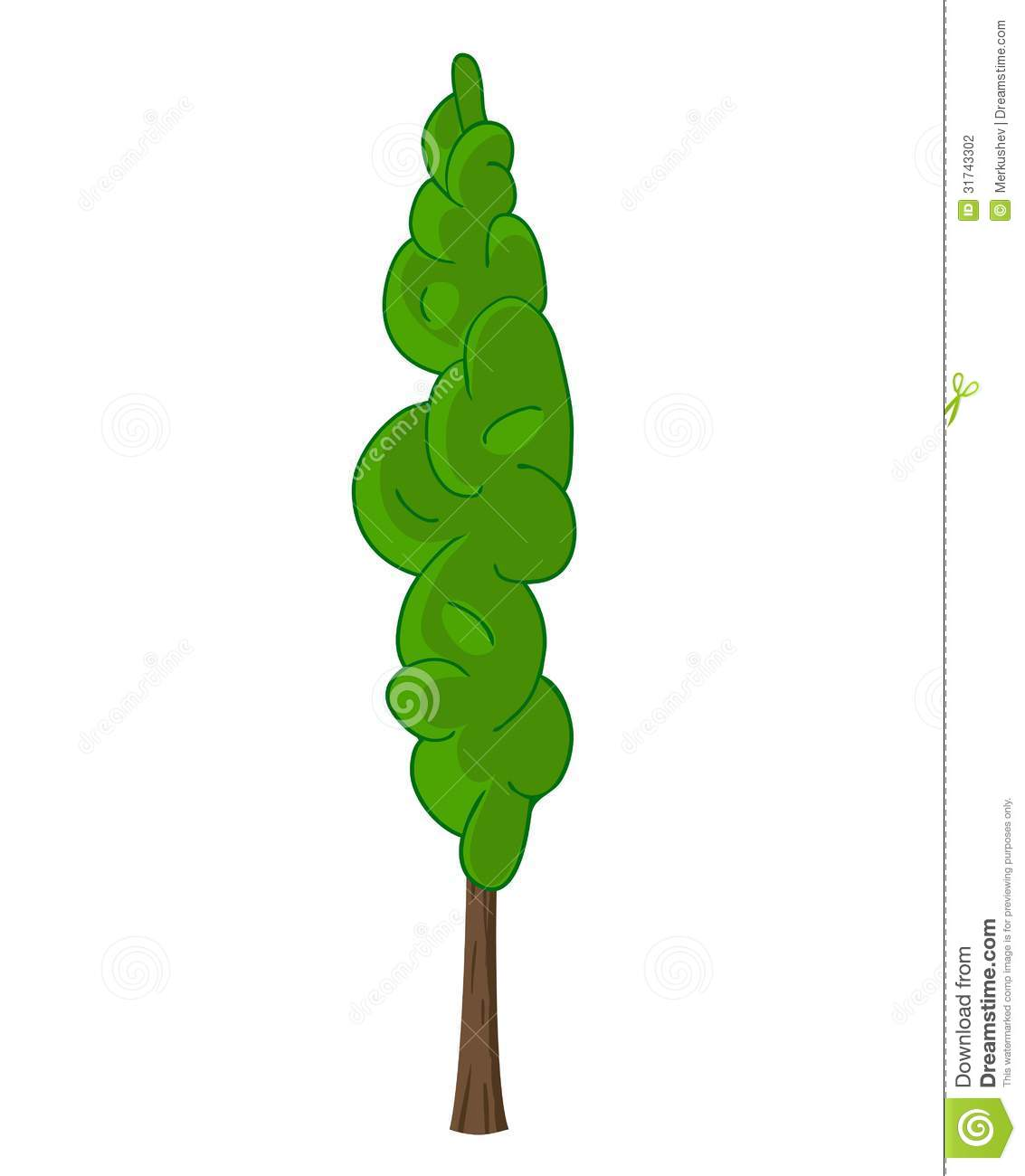 Cypress 20clipart.