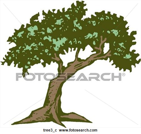 Florida cypress tree clipart.