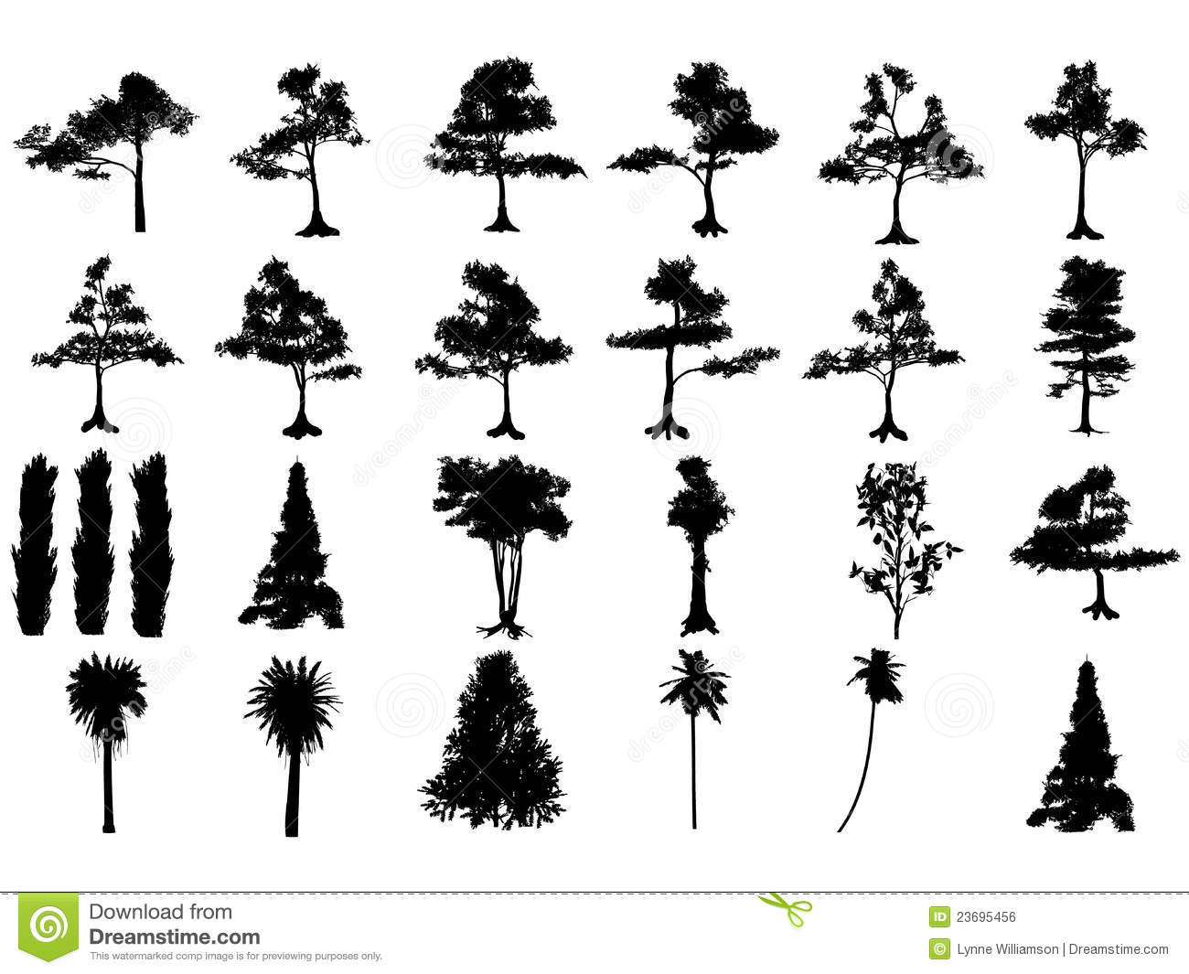 Cypress swamp clipart 20 free Cliparts | Download images ...