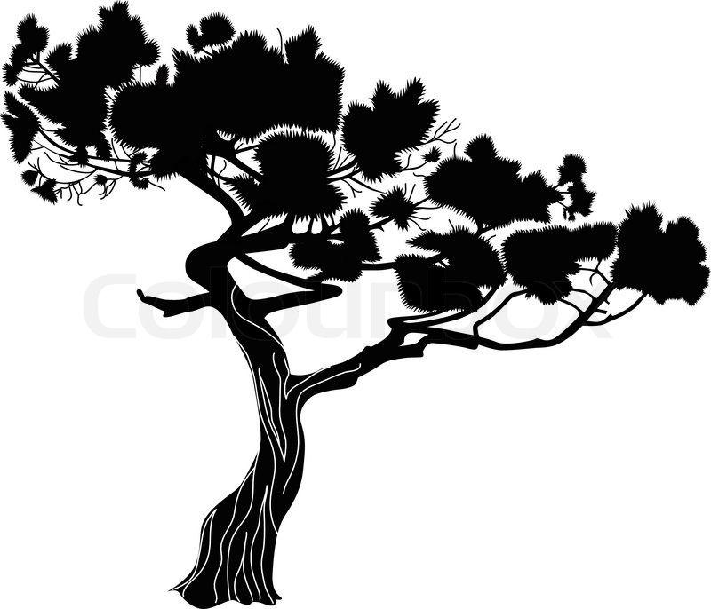 Cypress Tree Silhouette.
