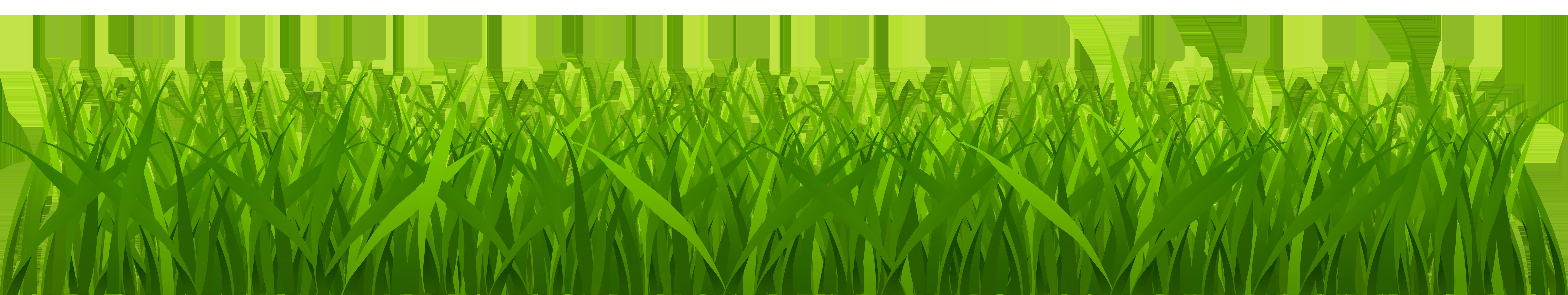 Grass Clip Art : Cyprus grass clipart clipground