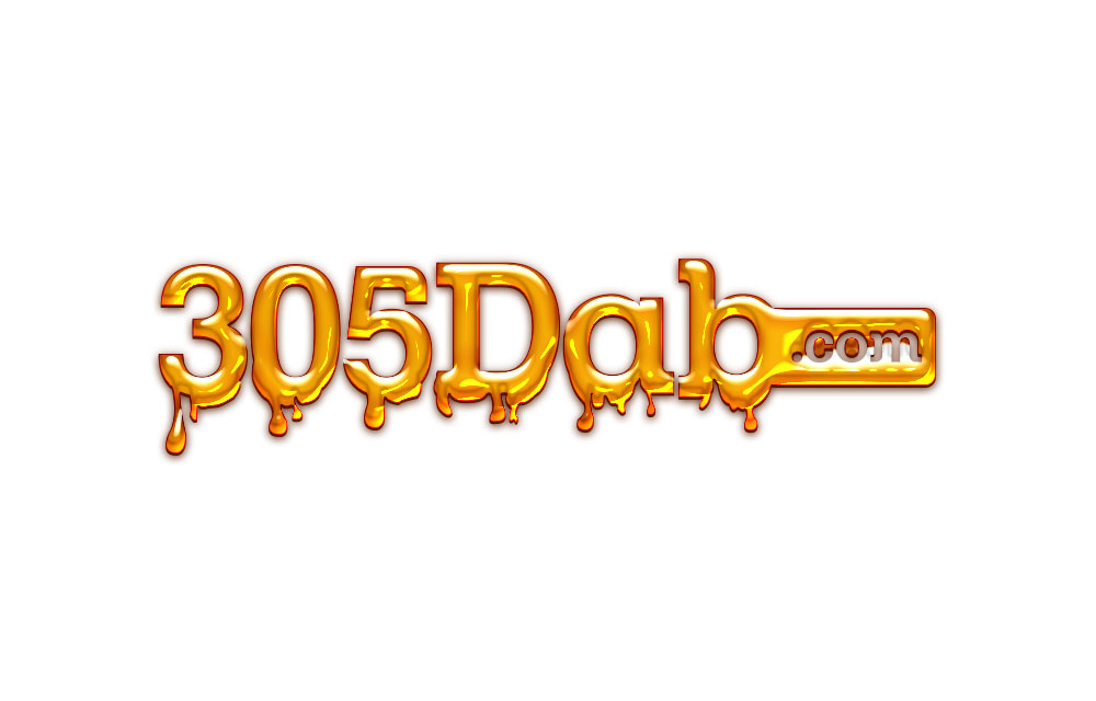 305 Dab Logo Design.