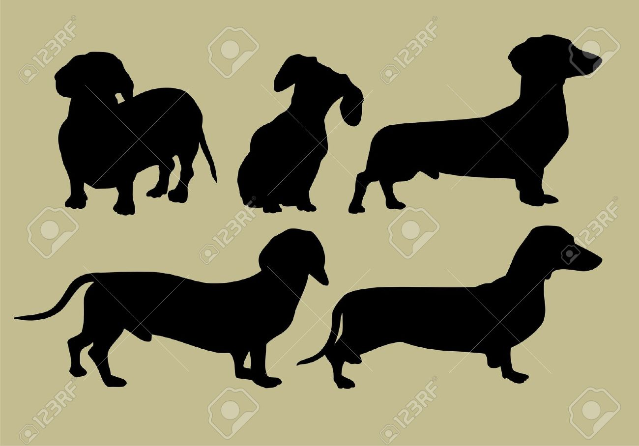838 Dachshund Silhouette Stock Vector Illustration And Royalty.