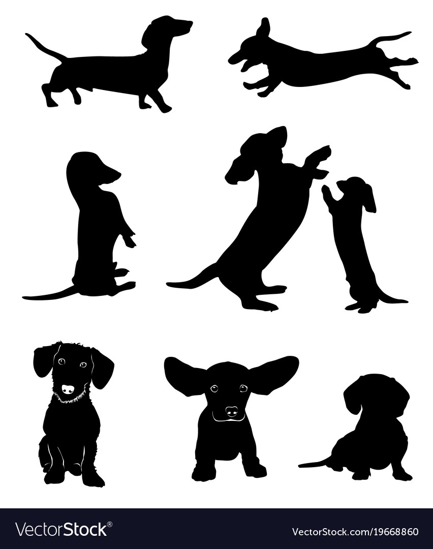 Silhouettes of dachshunds.
