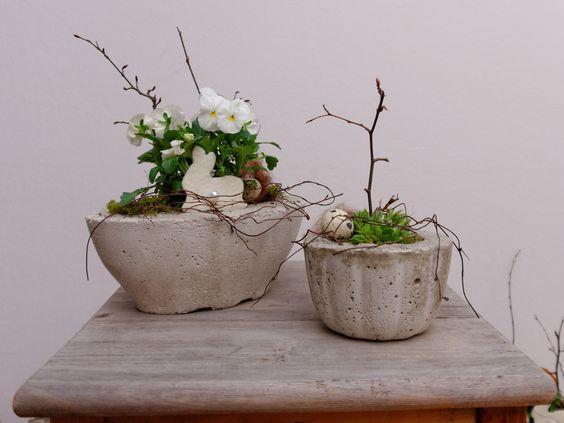 Blumenübertopf aus Beton. Betonschale mit Stiefmütterchen und.
