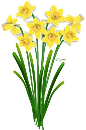 Free daffodil clip art.