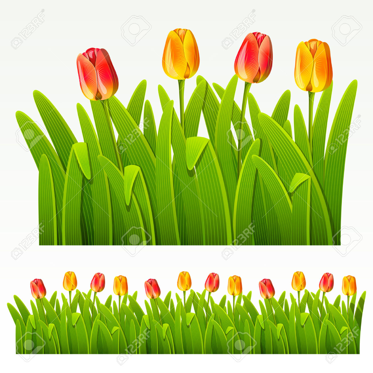 Clip Art Daffodils and Tulips.